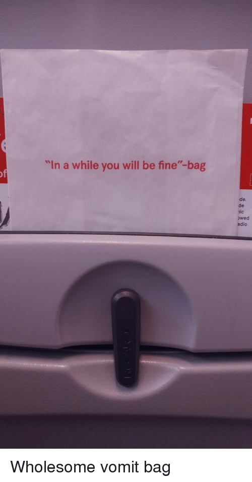"""Wholesome, Will, and You: """"In a while you will be fine""""-bag  de.  de  nic  owed  adio <p>Wholesome vomit bag</p>"""