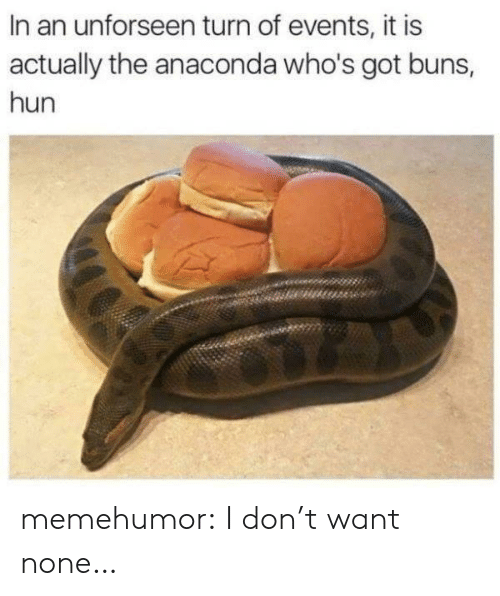 Anaconda, Don't Want None, and Tumblr: In an unforseen turn of events, it is  actually the anaconda who's got buns,  hun memehumor:  I don't want none…