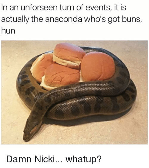 Anaconda, Funny, and Huns: In an unforseen turn of events, it is  actually the anaconda who's got buns,  hun Damn Nicki... whatup?