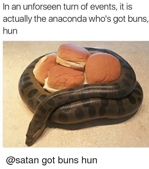 Anaconda, Huns, and Satan: In an unforseen turn of events, it is  actually the anaconda who's got buns,  hun @satan got buns hun