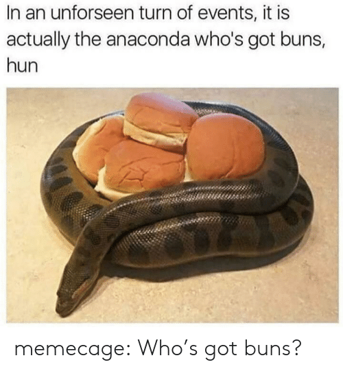 Anaconda, Tumblr, and Blog: In an unforseen turn of events, it is  actually the anaconda who's got buns,  hun memecage:  Who's got buns?