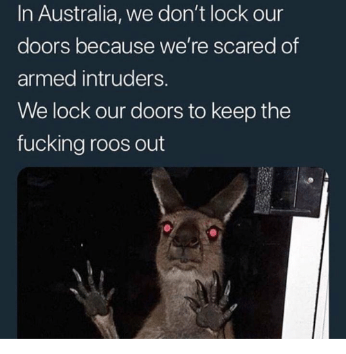 Fucking, Australia, and Doors: In Australia, we don't lock our  doors because we're scared of  armed intruders.  We lock our doors to keep the  fucking roos out