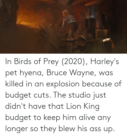 Lion King: In Birds of Prey (2020), Harley's pet hyena, Bruce Wayne, was killed in an explosion because of budget cuts. The studio just didn't have that Lion King budget to keep him alive any longer so they blew his ass up.
