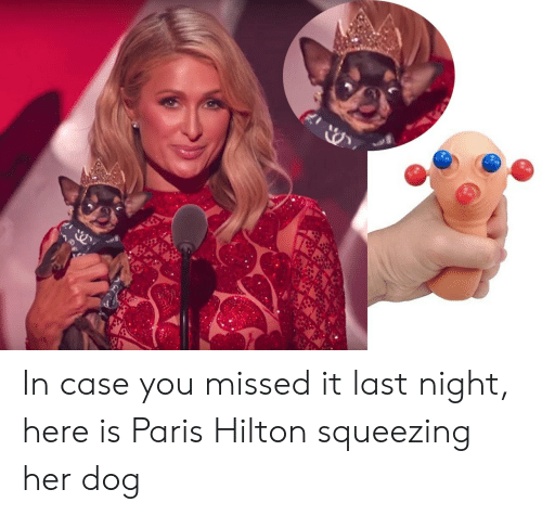 Squeezing: In case you missed it last night, here is Paris Hilton squeezing her dog