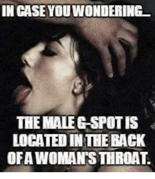 Case, Gspot, and Rack: IN CASE YOUWONDERING  THE MALE GSPOT IS  LOCATED IN THE RACK  OFA WOMAN'STHROAT