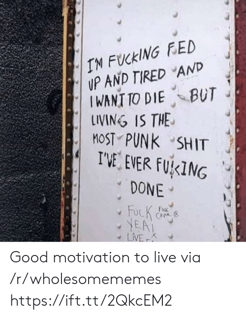 R Wholesomememes: IN FUCKING FED  UP AND TIRED AND  IWANT TO DIE BUT  LINING IS THE  MOST PUNK SHIT  I'VE EVER FUKING  DONE  FucK  YEA  LiVE  FroR  CAVA (8  K Good motivation to live via /r/wholesomememes https://ift.tt/2QkcEM2
