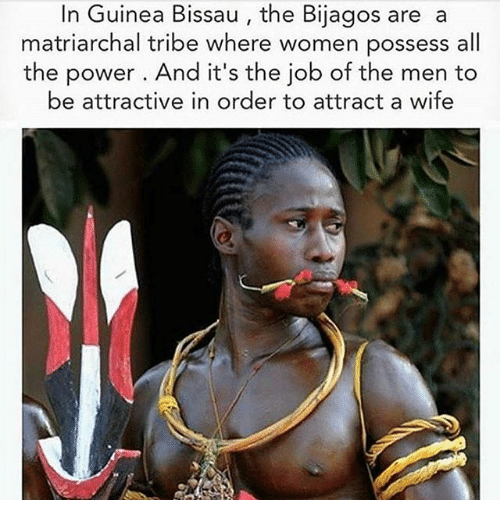 possessive: In Guinea Bissau, the Bijagos are a  matriarchal tribe where women possess all  the power . And it's the job of the men to  be attractive in order to attract a wife