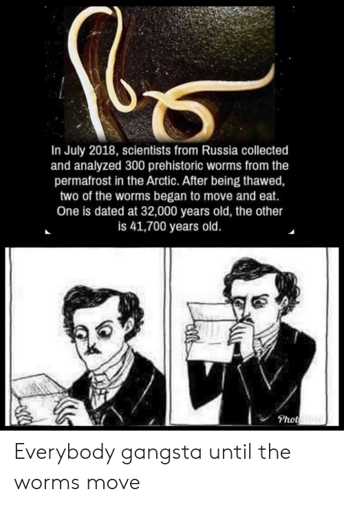 Gangsta, Russia, and Old: In July 2018, scientists from Russia collected  and analyzed 300 prehistoric worms from the  permafrost in the Arctic. After being thawed,  two of the worms began to move and eat.  One is dated at 32,000 years old, the other  is 41,700 years old  Phot Everybody gangsta until the worms move