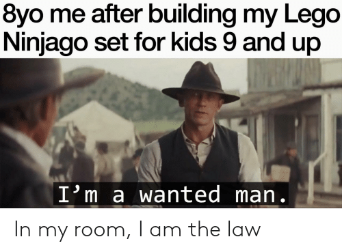 room: In my room, I am the law