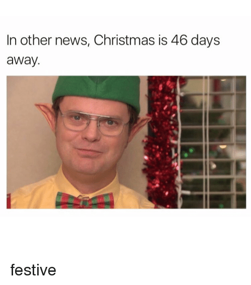 news girl and festival in other news christmas is 46 days away - How Many Days Away Is Christmas
