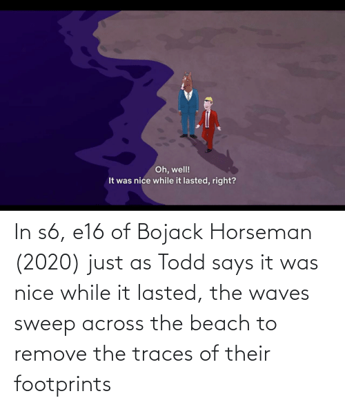 Waves: In s6, e16 of Bojack Horseman (2020) just as Todd says it was nice while it lasted, the waves sweep across the beach to remove the traces of their footprints
