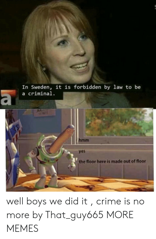 Sweden: In Sweden, it is forbidden by law to be  a criminal  hmm  yes  the floor here is made out of floor well boys we did it , crime is no more by That_guy665 MORE MEMES
