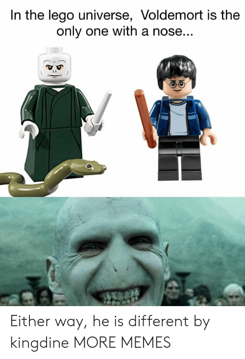 voldemort: In the lego universe, Voldemort is the  only one with a nose Either way, he is different by kingdine MORE MEMES