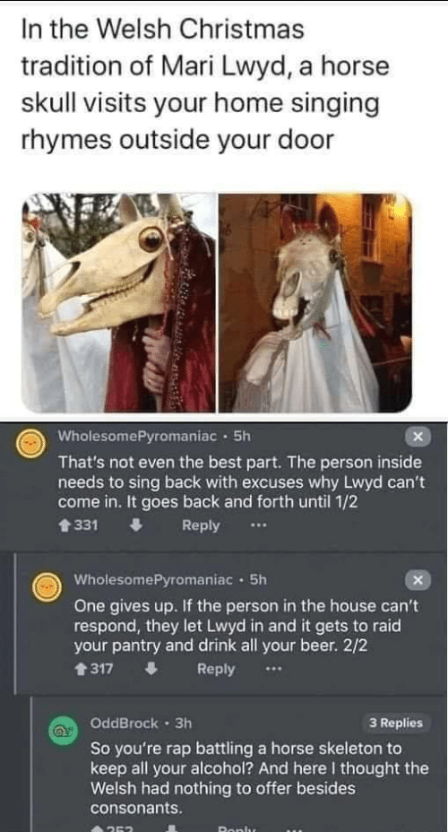 1 2: In the Welsh Christmas  tradition of Mari Lwyd, a horse  skull visits your home singing  rhymes outside your door  WholesomePyromaniac · 5h  That's not even the best part. The person inside  needs to sing back with excuses why Lwyd can't  come in. It goes back and forth until 1/2  會331  Reply  WholesomePyromaniac · 5h  One gives up. If the person in the house can't  respond, they let Lwyd in and it gets to raid  your pantry and drink all your beer. 2/2  1317  Reply  OddBrock · 3h  3 Replies  So you're rap battling a horse skeleton to  keep all your alcohol? And here I thought the  Welsh had nothing to offer besides  consonants.  Ronlu