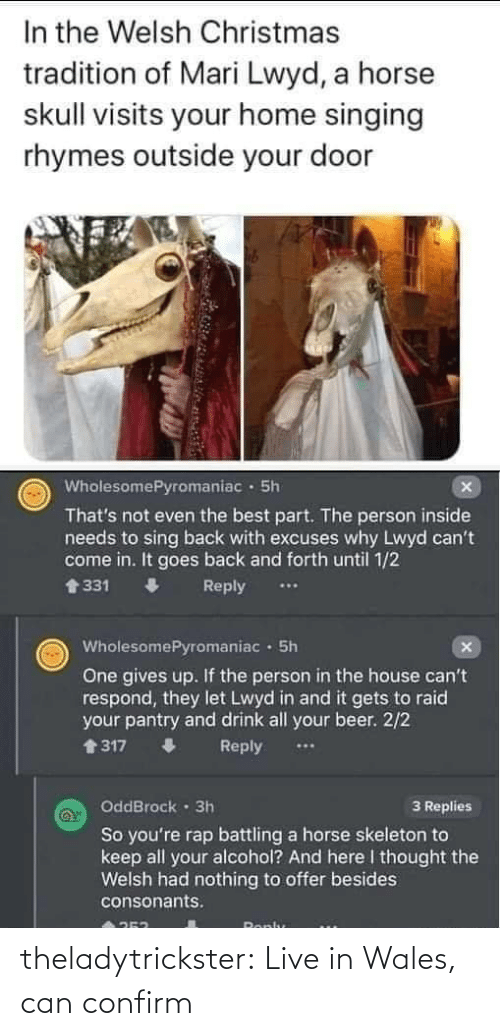 1 2: In the Welsh Christmas  tradition of Mari Lwyd, a horse  skull visits your home singing  rhymes outside your door  WholesomePyromaniac · 5h  That's not even the best part. The person inside  needs to sing back with excuses why Lwyd can't  come in. It goes back and forth until 1/2  會331  Reply  WholesomePyromaniac · 5h  One gives up. If the person in the house can't  respond, they let Lwyd in and it gets to raid  your pantry and drink all your beer. 2/2  1317  Reply  OddBrock · 3h  3 Replies  So you're rap battling a horse skeleton to  keep all your alcohol? And here I thought the  Welsh had nothing to offer besides  consonants.  Ronlu theladytrickster:  Live in Wales, can confirm