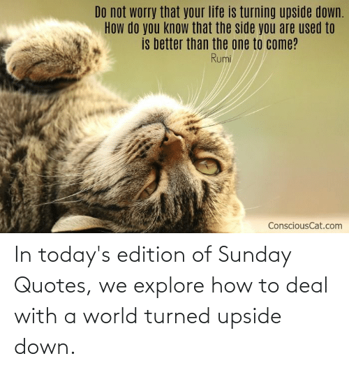 Turned: In today's edition of Sunday Quotes, we explore how to deal with a world turned upside down.