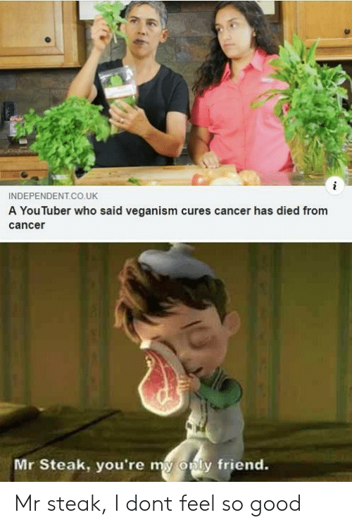 Only Friend: INDEPENDENT.CO.UK  A You luber who said veganism cures cancer has died from  cance  Mr Steak, you're my  only friend. Mr steak, I dont feel so good