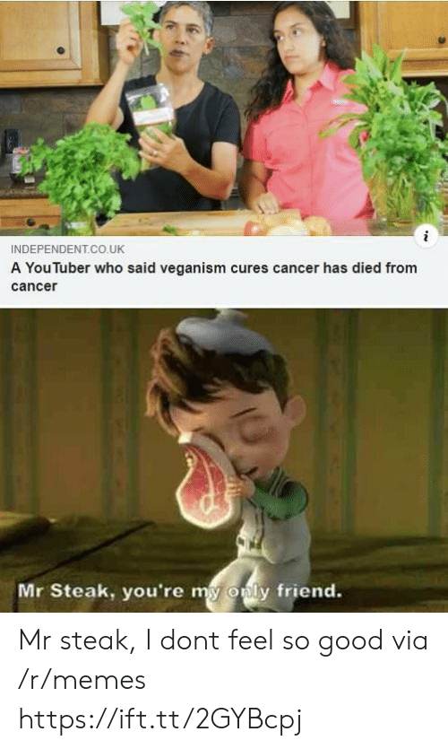 Only Friend: INDEPENDENT.CO.UK  A You luber who said veganism cures cancer has died from  cance  Mr Steak, you're my  only friend. Mr steak, I dont feel so good via /r/memes https://ift.tt/2GYBcpj