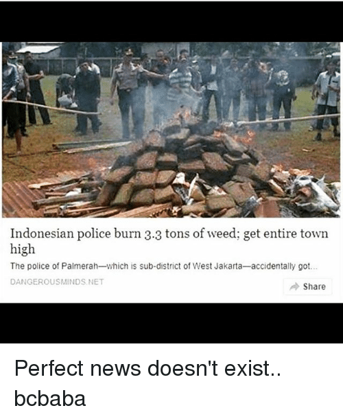 Indonesian: Indonesian police burn 3.3 tons of weed; get entire town  high  The police of Palmerah-which is sub-district of West Jakarta-accidentally got..  DANGEROUSMINDS NET  → Share Perfect news doesn't exist.. bcbaba