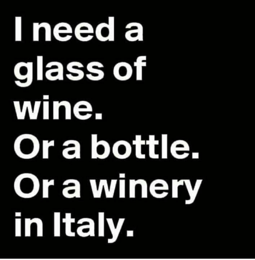 Memes, Wine, and Italy: Ineed a  glass of  wine.  Or a bottle.  Or a winery  in Italy.