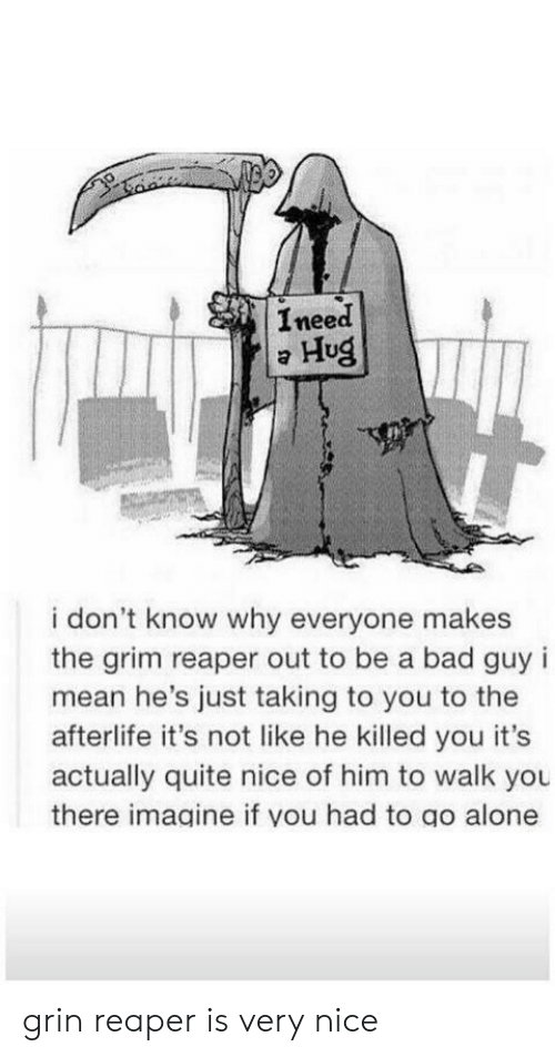 i dont know why: Ineed  Hug  i don't know why everyone makes  the grim reaper out to be a bad guy i  mean he's just taking to you to the  afterlife it's not like he killed you it's  actually quite nice of him to walk you  there imagine if you had to go alone grin reaper is very nice