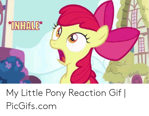 🅱️ 25+ Best Memes About Mlp Reaction Images | Mlp Reaction