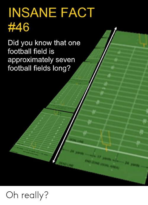 Football, Memes, and 🤖: INSANE FACT  #46  Did you know that one  football field is  approximately seven  football fields long? Oh really?