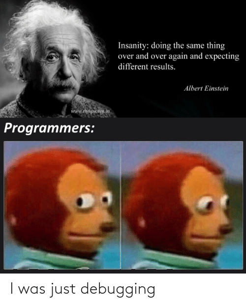 Insanity: Insanity: doing the same thing  over and over again and expecting  different results.  Albert Einstein  www.thequotes.in  Programmers: I was just debugging