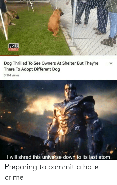 Shred: INSIDE  Dog Thrilled To See Owners At Shelter But They're  There To Adopt Different Dog  3.9M views  I will shred this universe down to its last atom Preparing to commit a hate crime