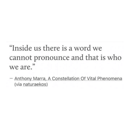 """Pronounce: """"Inside us there is a word we  cannot pronounce and that is who  we are.""""  Anthony Marra, A Constellation Of Vital Phenomena  (via naturaekos)"""