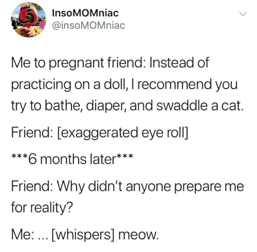 Pregnant, Reality, and Cat: InsoMOMniac  @insoMOMniac  Me to pregnant friend: Instead of  practicing on a doll, I recommend you  try to bathe, diaper, and swaddle a cat.  Friend: [exaggerated eye roll]  ***  6 months later***  Friend: Why didn't anyone prepare me  for reality?  Me:... [whispers] meow.