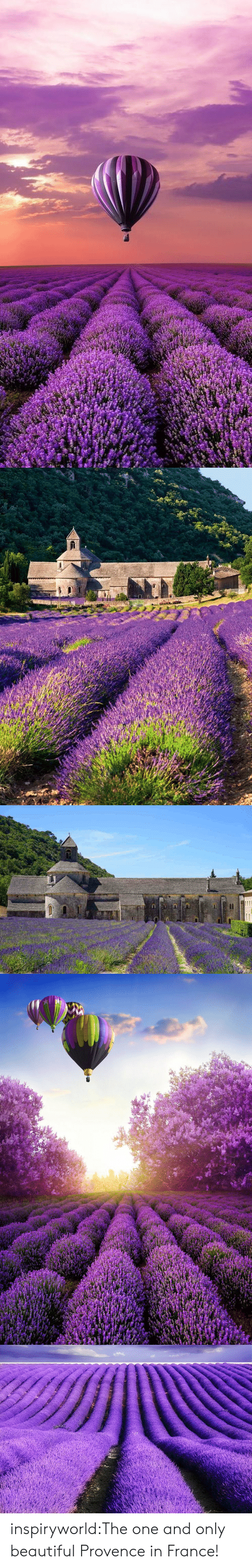 the one and only: inspiryworld:The one and only beautiful Provence in France!