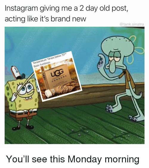 Funny, Instagram, and Monday: Instagram giving me a 2 day old post,  acting like it's brand new  @tank.sinatra  Temperature drops below 70°*  Basic fuckboys  CON DOM s  cOND  SWEEDS You'll see this Monday morning