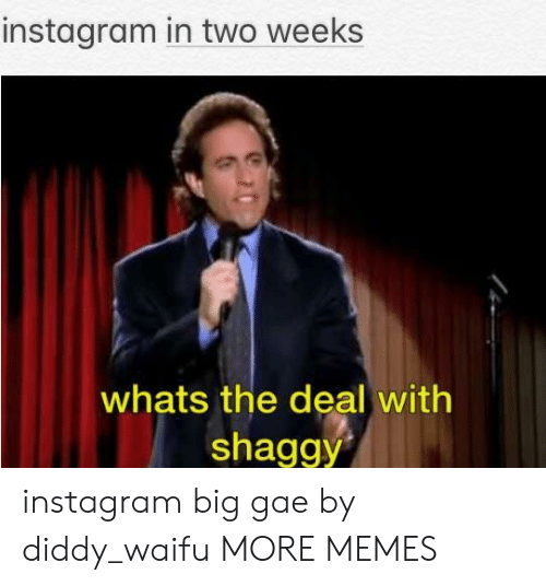 Waifu: instagram in two weeks  whats the deal with  shaggy instagram big gae by diddy_waifu MORE MEMES