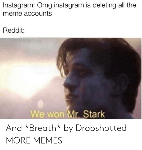 Dank, Instagram, and Meme: Instagram: Omg instagram is deleting all the  meme accounts  Reddit:  We won Mr. Stark And *Breath* by Dropshotted MORE MEMES
