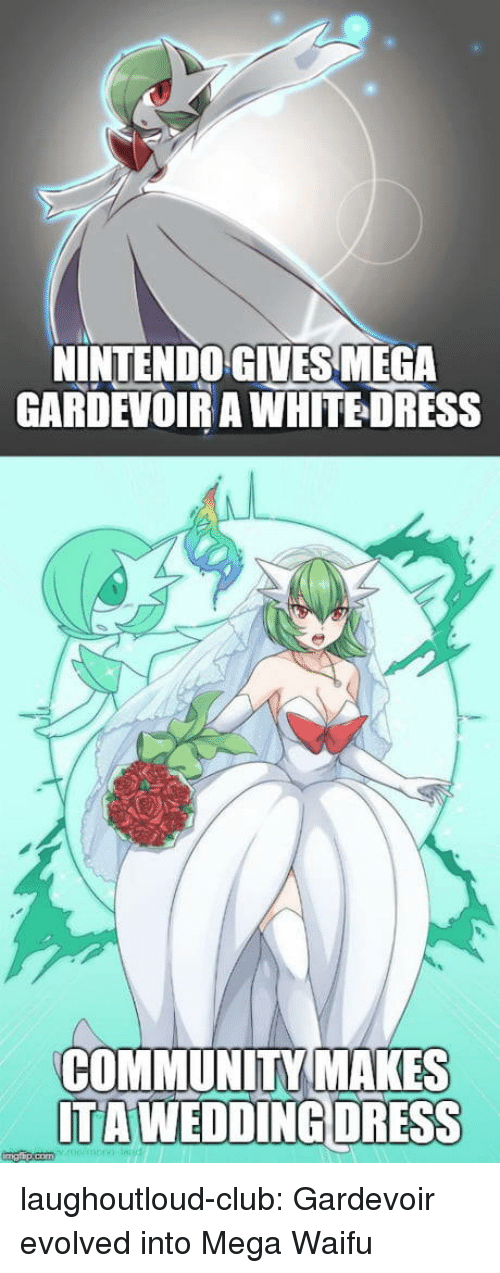 Club, Community, and Tumblr: INTENDO GIVES MEGA  GARDEVOIR A WHITEDRESS  COMMUNITY MAKES  TAWEDDİNGDRESS laughoutloud-club:  Gardevoir evolved into Mega Waifu