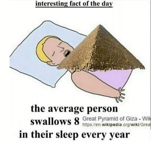 Wikipedia, Wiki, and Sleep: interesting fact of the day  the average persoin  swallows 8 nipeaien agwen  Great Pyramid of Giza Wi  https llen.wikipedia.org/wiki/Grea  in their sleep every year
