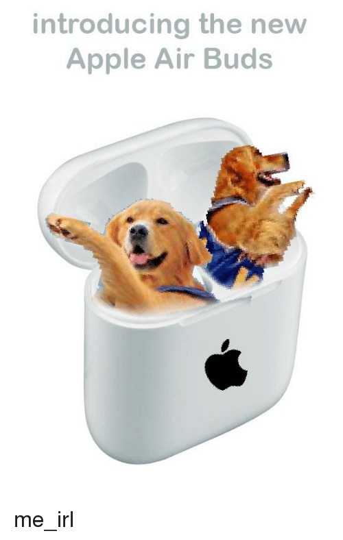 Apple, Irl, and Me IRL: introducing the new  Apple Air Buds