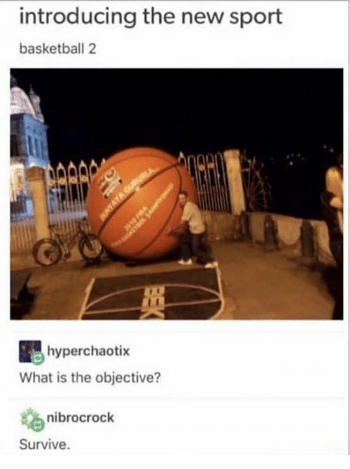 Basketball, What Is, and Sport: introducing the new sport  basketball 2  hyperchaotix  What is the objective?  nibrocrock  Survive.
