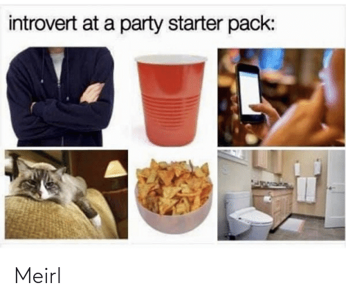 starter: introvert at a party starter pack: Meirl