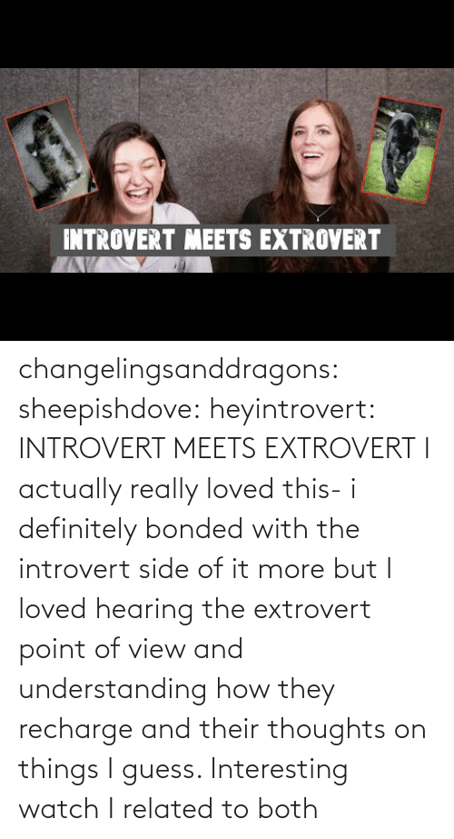 Definitely, Introvert, and Tumblr: INTROVERT MEETS EXTROVERT changelingsanddragons: sheepishdove:  heyintrovert: INTROVERT MEETS EXTROVERT I actually really loved this- i definitely bonded with the introvert side of it more but I loved hearing the extrovert point of view and understanding how they recharge and their thoughts on things I guess. Interesting watch    I related to both