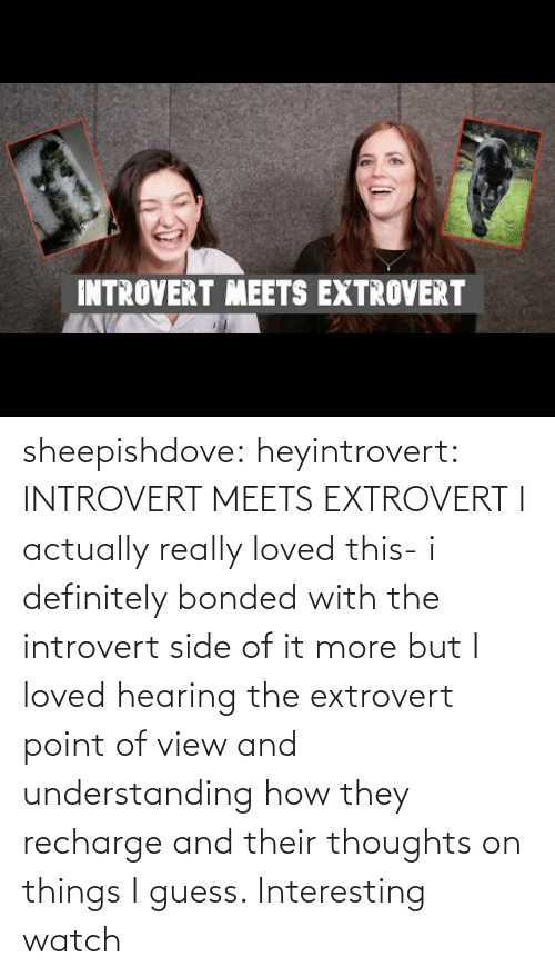 Understanding: INTROVERT MEETS EXTROVERT sheepishdove: heyintrovert: INTROVERT MEETS EXTROVERT I actually really loved this- i definitely bonded with the introvert side of it more but I loved hearing the extrovert point of view and understanding how they recharge and their thoughts on things I guess. Interesting watch