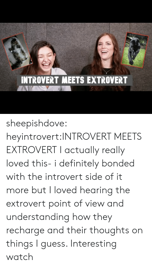 Understanding: INTROVERT MEETS EXTROVERT sheepishdove:  heyintrovert:INTROVERT MEETS EXTROVERT I actually really loved this- i definitely bonded with the introvert side of it more but I loved hearing the extrovert point of view and understanding how they recharge and their thoughts on things I guess. Interesting watch