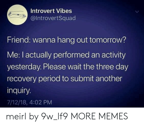 please wait: Introvert Vibes  @IntrovertSquad  Friend: wanna hang out tomorrow?  Me: I actually performed an activity  yesterday. Please wait the three day  recovery period to submit another  inquiry.  7/12/18, 4:02 PM meirl by 9w_lf9 MORE MEMES