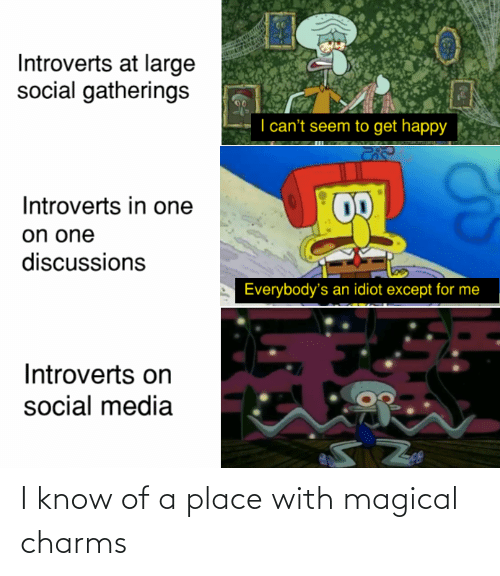 introverts: Introverts at large  social gatherings  I can't seem to get happy  Introverts in one  on one  discussions  Everybody's an idiot except for me  Introverts on  social media I know of a place with magical charms
