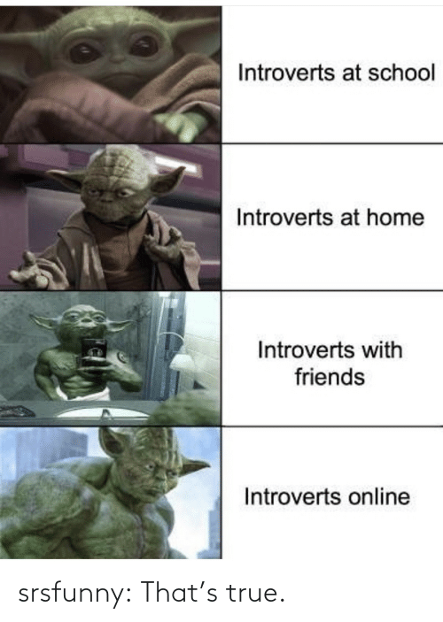 introverts: Introverts at school  Introverts at home  Introverts with  friends  Introverts online srsfunny:  That's true.