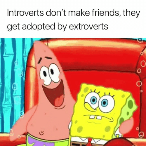 Make Friends: Introverts don't make friends, they  get adopted by extroverts  0  0
