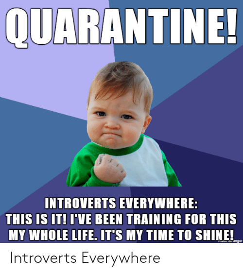 Everywhere and Introverts: Introverts Everywhere