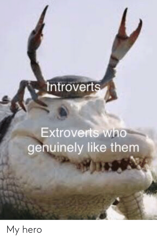 introverts: Introverts  Extroverts who  genuinely like them My hero