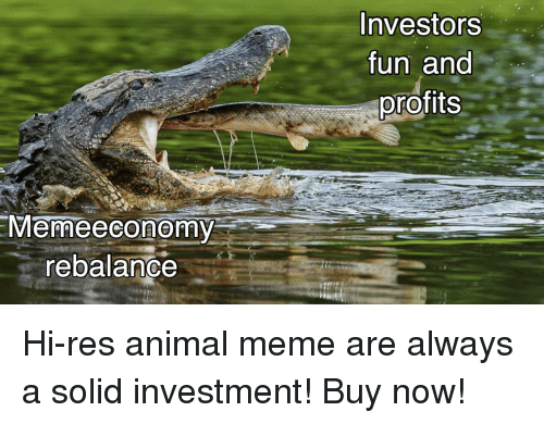 Meme, Animal, and Fun: Investors  fun and  profits  Memeeconomy  rebalance